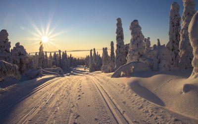 Finnland - Schnee - Sonne - Ski fahren